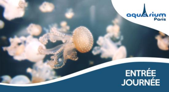 33% de réduction sur l'entrée à l'Aquarium de Paris
